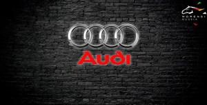 Audi A4 B8 Mk1 2.0 TFSi (211 л.с.)