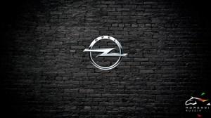 Opel Zafira B 2.0 T OPC (200 л.с.)